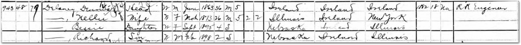 1900 US Census Dennis and Nellie